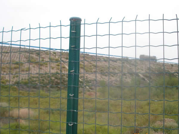 Euro Fence Good Corrosion Resistance Antiaging Nice